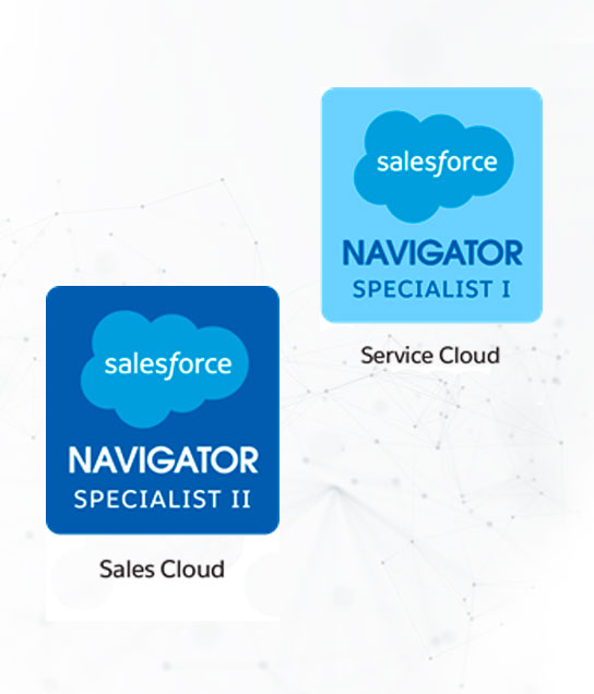 Navigator Specialist pela Salesforce